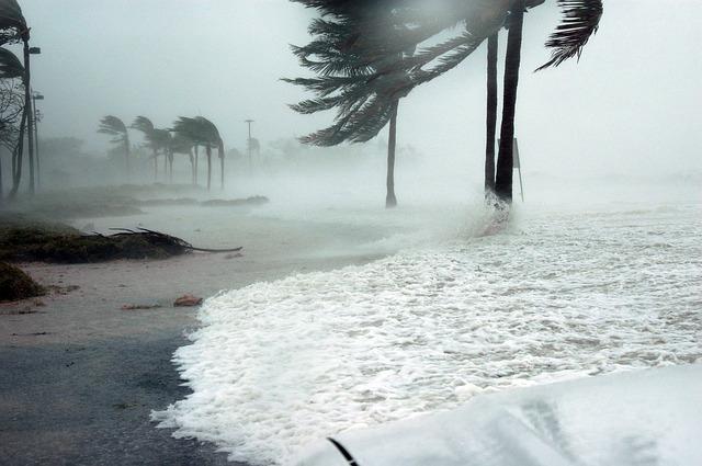 Hurricane Prep
